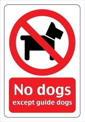 NO DOGS (Example Sign)