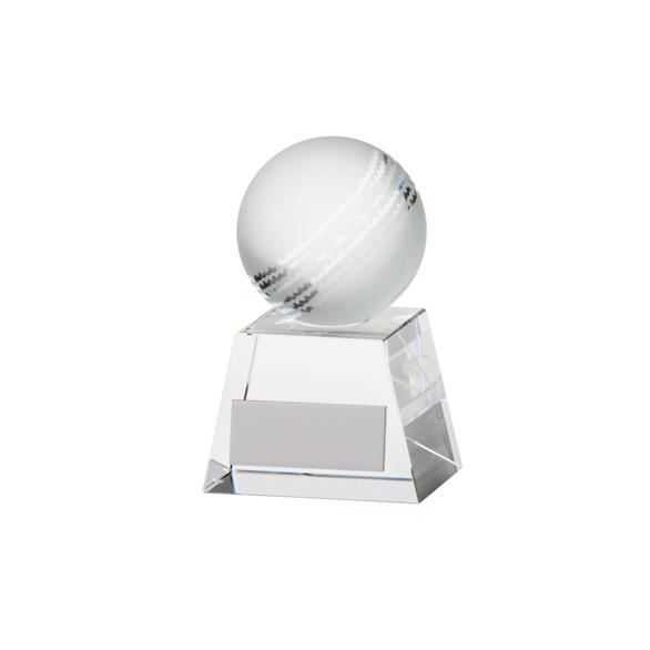 Voyager Cricket Crystal Award