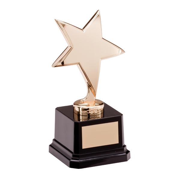 The Challenger Star Gold Award