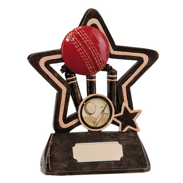 Little Star Cricket Award