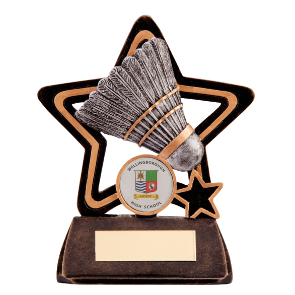 Little Star Badminton Award