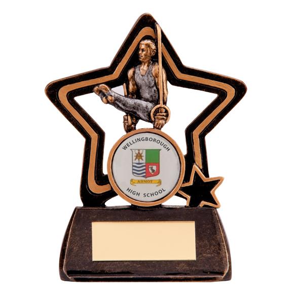 Little Star Gymnastics Award