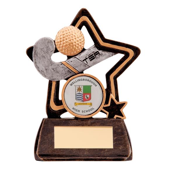 Little Star Hockey Award