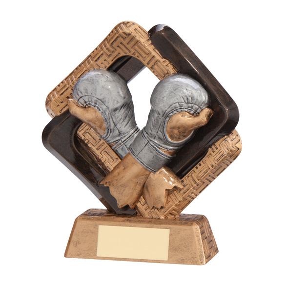 Sporting Unity MMA Fighter Award
