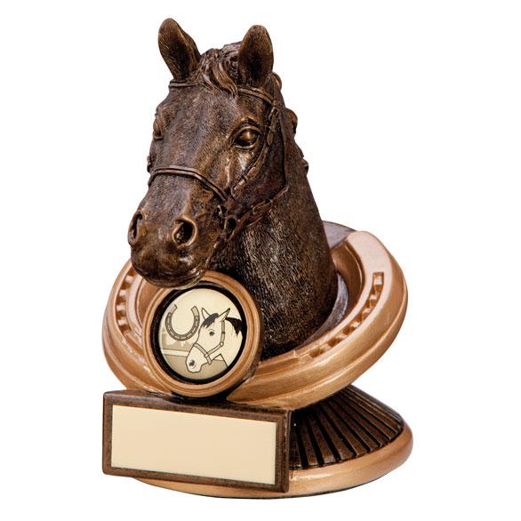 Endurance Equestrian Horse Head Award