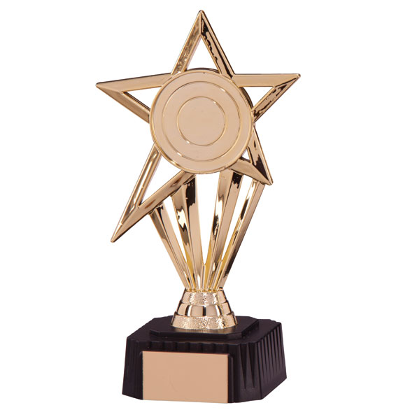High Star Gold Award
